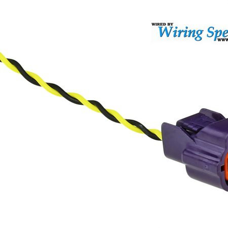 Wiring Specialties SR20 Idle Air Pigtail (Purple)
