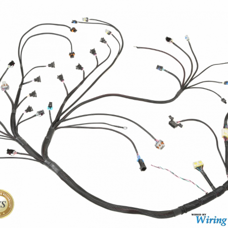 Wiring Specialties LSx / Gen IV Datsun Wiring Harness