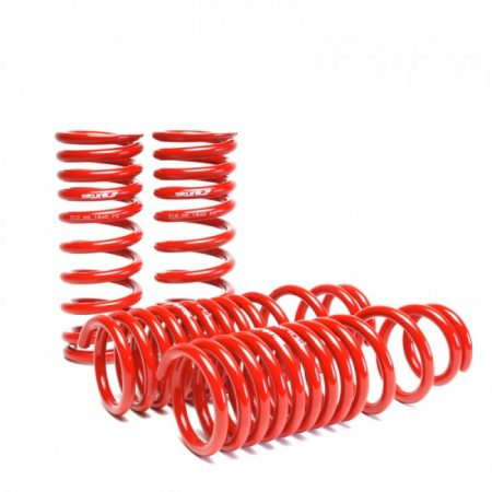 Skunk2 Lowering Springs - 1988-91 Civic / Crx